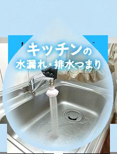 キッチンの水漏れ・排水つまり